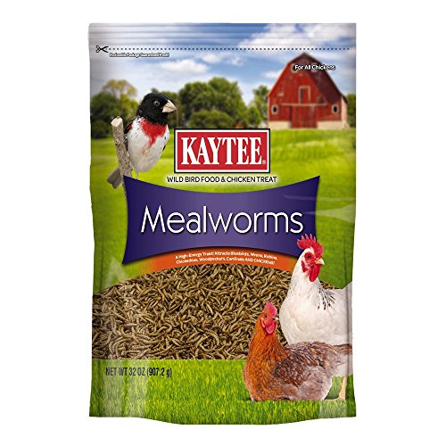 Kaytee Dried Mealworms for Chickens and Wild Birds by Kaytee