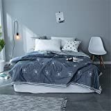 Air Conditioning Quilt AB Version Full Cotton Summer Cool Quilt Suitable Student Dormitory Home (Size : 200230cm)