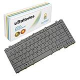 UBatteries Laptop Keyboard Toshiba Satellite A200 A300 A300D L300 L300D L510 M300 (Silver)