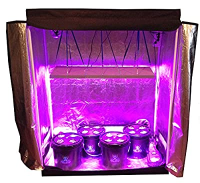 16 Site Hydroponic System Grow Room - Complete Grow Tent