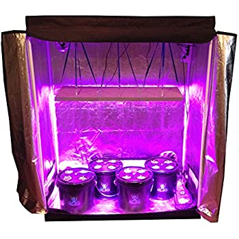 16 Site Hydroponic System Grow Room - Complete Grow Tent  sc 1 st  Amazon.com : buddha room grow tent - memphite.com