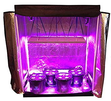 16 Site Hydroponic System Grow Room - Complete Grow Tent  sc 1 st  Amazon.com & Amazon.com : 16 Site Hydroponic System Grow Room - Complete Grow ...