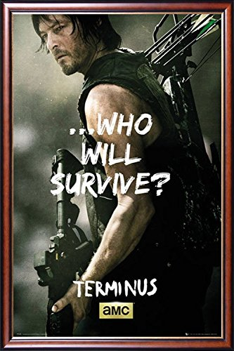 FRAMED Daryl Dixon - Terminus 24x36 Poster Dry Mounted in Ex