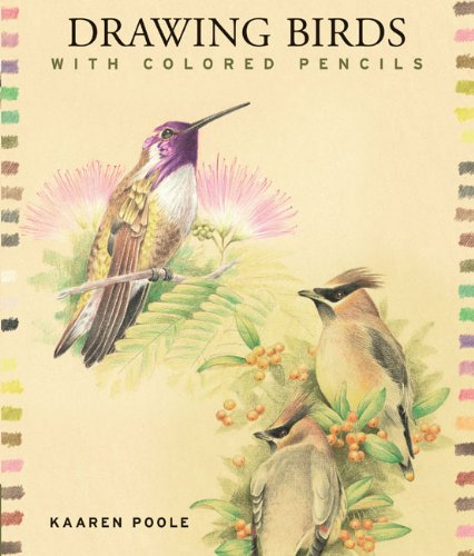 Colored Pencil Instruction (Drawing Birds with Colored)