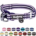 Blueberry Pet 15 Colors 3m Reflective Multi Colored Stripe Adjustable Dog Collar Orchid And Lavender Large Neck 18 26