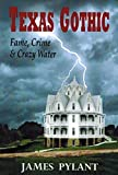img - for Texas Gothic: Fame, Crime & Crazy Water book / textbook / text book