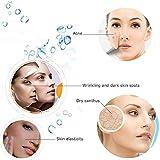 Hann Facial Steamer Professional Sinus Steam