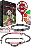 Pet Dreamland Hands Free Running Dog Leash - One/Two Medium to Large Dogs