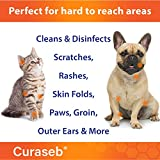 Curaseb Chlorhexidine Wipes – 50 Pads, For Dogs & Cats – Antifungal, Antibacterial & Anti Yeast – Treats Ringworm, Pyoderma, Acne & Hot Spots – Broad Spectrum Veterinary Formula