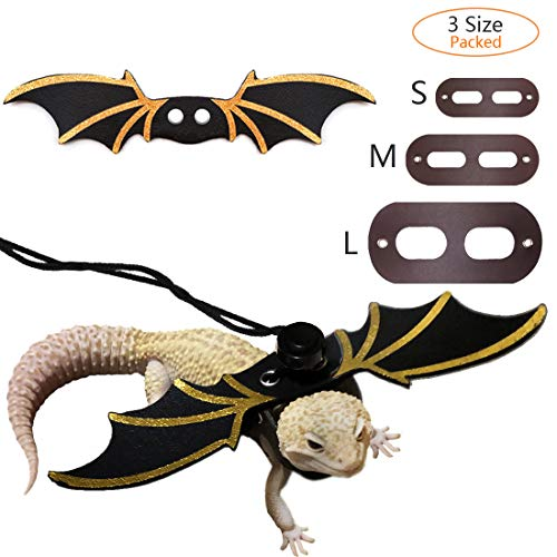 Top 10 best leopard gecko leash and harness small for 2020
