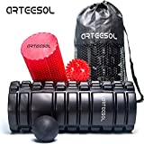 Arteesol Foam Roller 13-Inch 2-in-1 Foam Roller, High Density Muscle Roller with Spikey Massage Ball & Lacrosse Massage Ball & Free Portable Bag Massage Roller for Deep Tissue Massage, Exercise, Yoga