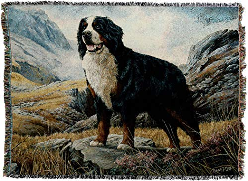 Dog Ornaments Mountain (Pure Country Weavers - Bernese Mountain Dog Woven Tapestry Throw Blanket with Fringe Cotton USA Size 72 x 54)