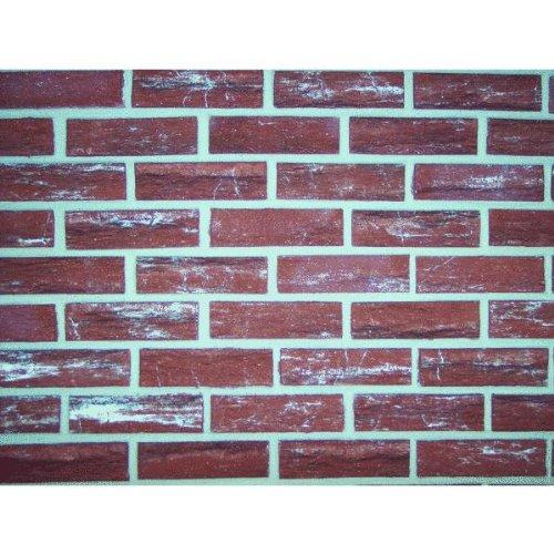CTN20 Burnt Sienna Brick Facing / Stone Brick ZYGROVE CORP/Z-BRICK BRANDS Zc025205