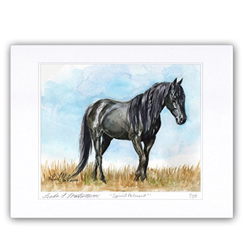 horse-lovers-special-limited-edition-fine-art-in-house-print-from-original-painting-spirit-released-