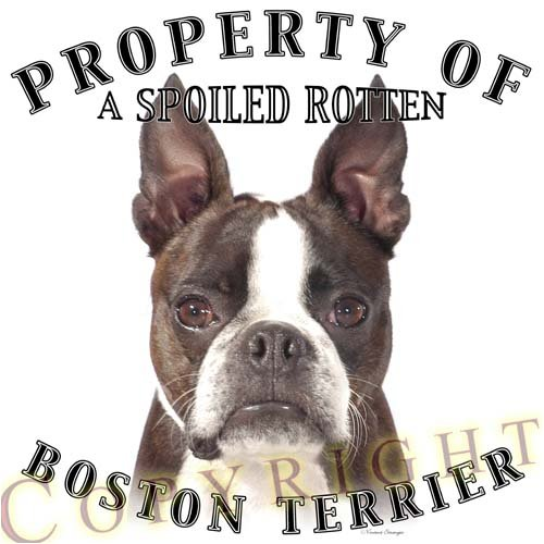 Boston Terrier Mousepad Dog Mouse Pad  Property Of