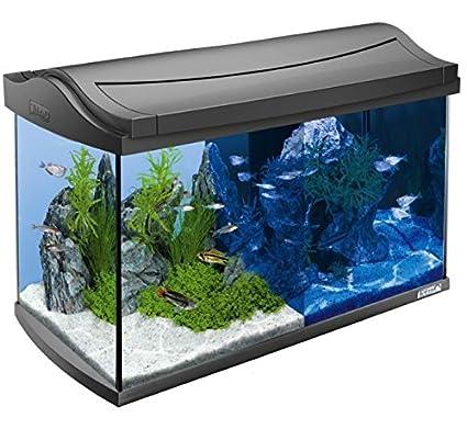 fully-equipped 60L Acuario – Lote de con LED de bajo consumo, filtro de
