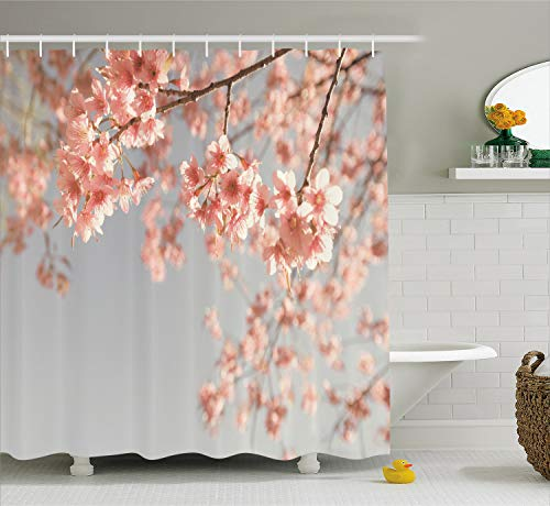 Ambesonne Peach Shower Curtain, Japanese Scenery Sakura Tree Cherry Blossom Nature Photography Coming of Spring, Fabric Bathroom Decor Set with Hooks, 70 Inches, Bluegrey Coral