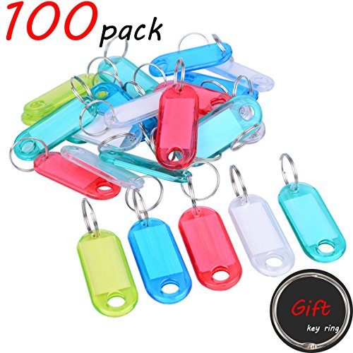 Key Tags-Key Labels 100 Pack Clear Plastic key Tags Multi-Colors Key Tags + Gift Split Ring Key