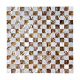 Dazzle Mosaic Mother of Pearl Mosaic Wall Tiles Natural Chess Board 10 Sq Ft Pack of 10
