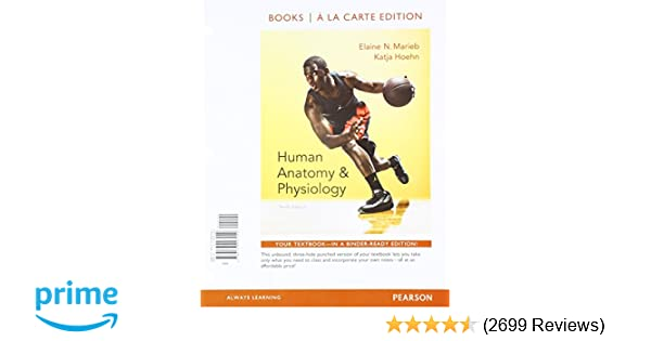 Amazon com: Human Anatomy & Physiology Plus Modified