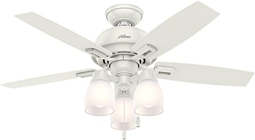 HUNTER 52229 Donegan Indoor Ceiling Fan