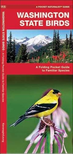 Washington State Birds: A Folding Pocket Guide to Familiar Species (A Pocket Naturalist Guide)