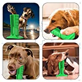 Viet's Brite Bite Brushing Stick - Pet Dog Toothbrush Stick Chew Toys Doggy Oral Care Tooth Cleaning Interactive Training - Large Size (40-80lbs Dogs)