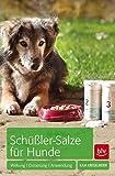 Schüßler-Salze für Hunde: Wirkung · Dosierung · Anwendung