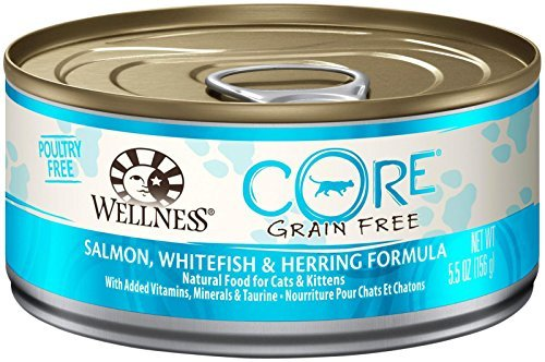 Wellness CORE Natural Grain Free Wet Canned Cat Food - Salmon Whitefish & Herring Recipe - 24x5.5oz by Wellness CoreÃ'Â