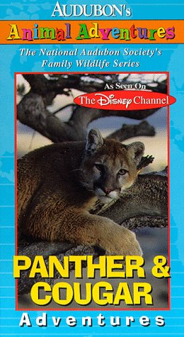 Audubons Animal Adventures [USA] [VHS]: Amazon.es: Brad Kane, Brad Kane: Cine y Series TV