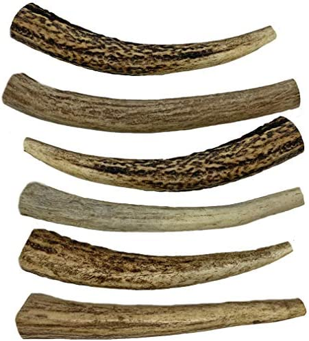 WhiteTail Naturals 6 Pack- Small 4 -5 All Natural Deer Antler Dog Chews