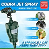 Hoont Cobra Outdoor Water Jet Blaster Animal Pest Repeller – Motion Activated Sprinkler Pest Control Repellent - Blasts Cats, Dogs, Squirrels, Birds, Deer, Etc. Out of Your Property [UPGRADED]