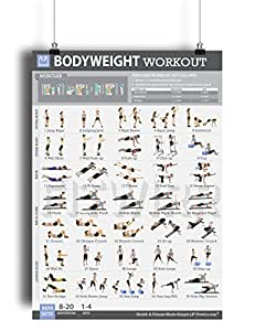 Amazon.com : Bodyweight Exercise Poster - Total Body Fitness - Laminated - Home Gym Workout