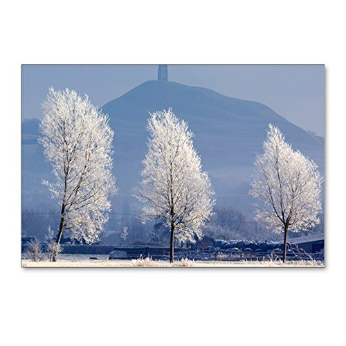 (CafePress - Frost-Covered Trees And Glastonbury Tor - Postcard - Postcards (Package of 8), 6