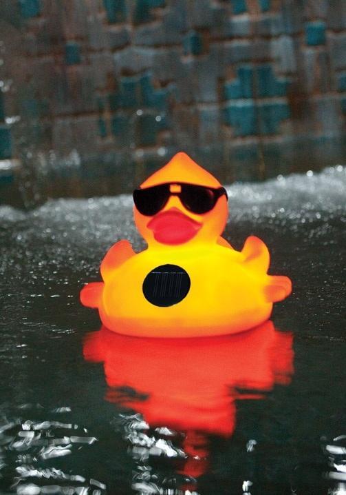 Amazon Com Game 8002 Solar Light Up Duck Pool