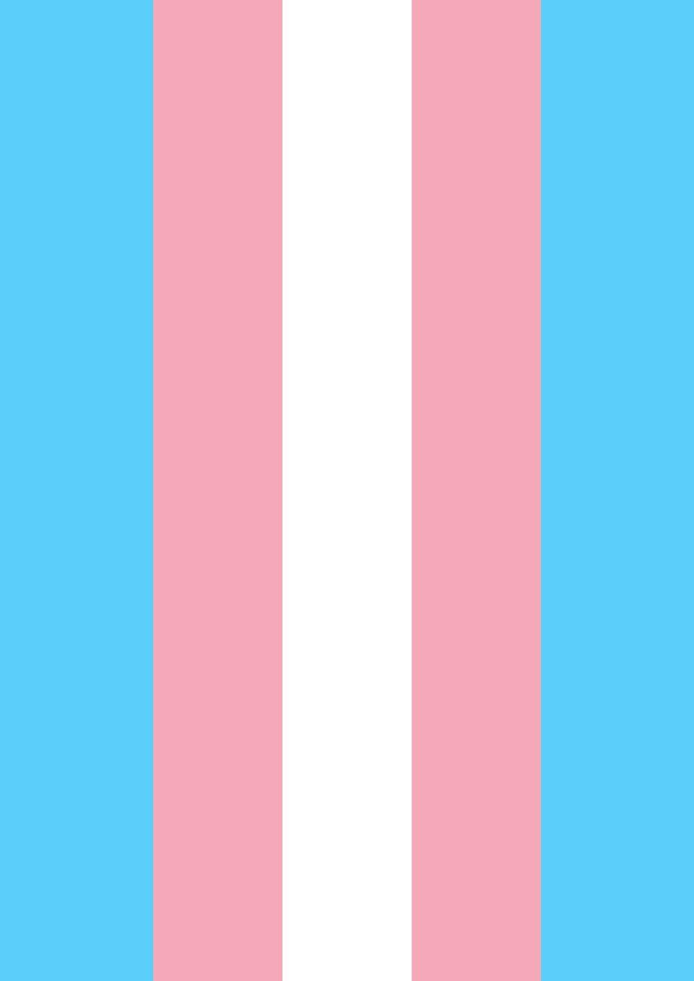 Toland Home Garden Transgender Pride 12.5 x 18 Inch Decorative Pink Blue White Stripe Support Garden Flag