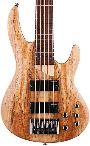 ESP LTD B-205SM FL Fretless Spalted Maple 5-String Bass Guitar, Natural Satin