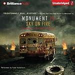 Sky on Fire   Emmy Laybourne