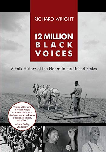 12 Million Black Voices