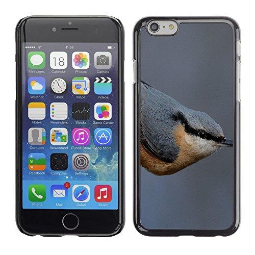 "Premio Sottile Slim Cassa Custodia Case Cover Shell // F00015478 Oiseau // Apple iPhone 6 6S 6G PLUS 5.5"""
