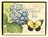 C.R. Gibson Thank You Notes, Set of 10 Boxed Cards With Envelopes -Eden