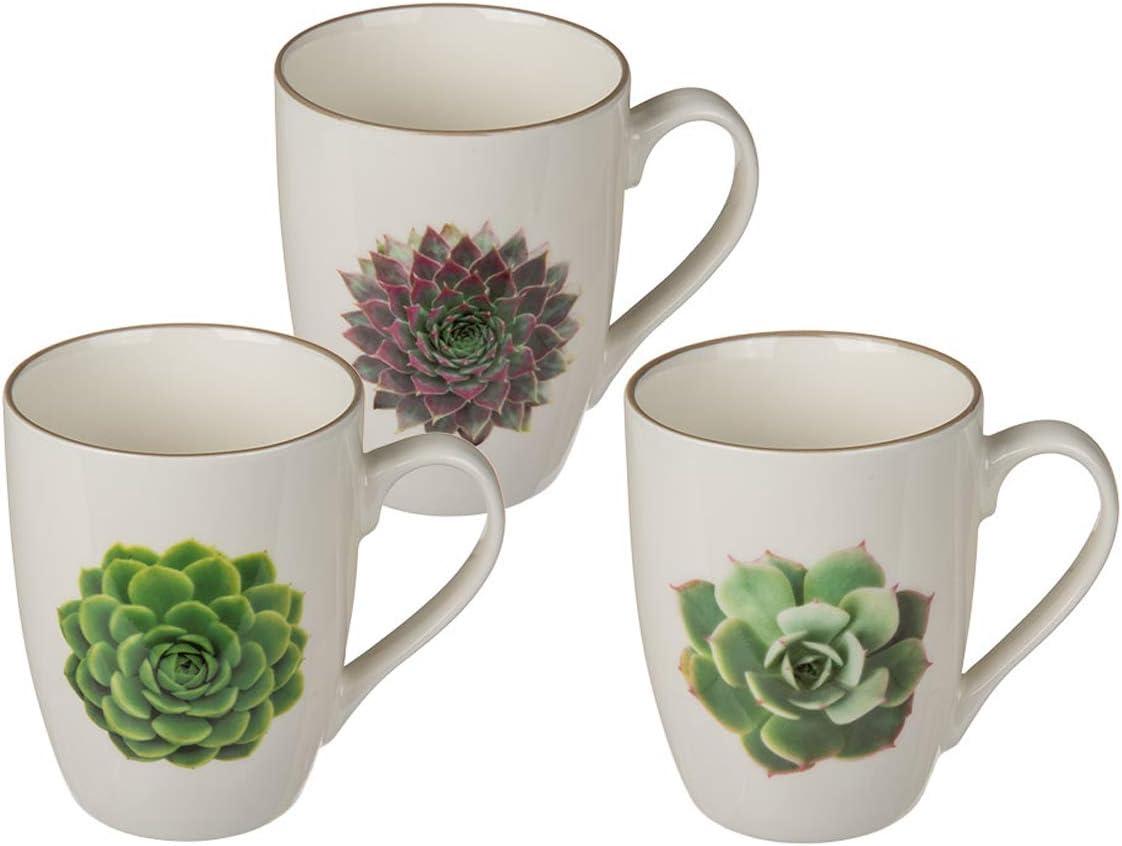Bada Bing 3er Set M/üslischale Kaktus Schale mit 3 unterschiedlichen Kakteen Sch/älchen Modernes Design Edel Geschenk 64