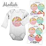 12 Monthly Baby Stickers, Tribal, Flowers, Feathers, Arrows, Girl, Baby Belly Stickers, Baby Month Stickers, First Year Stickers Months 1-12, Arrows, Flowers, Tribal, Pink, Mint, Purple, Girl