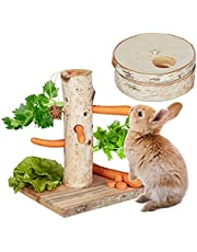 Relaxdays Konijnenspeelgoed, 2-delige set, voederboom & intelligent speelgoed, hout, accessoires cavia's, hazen, natuur