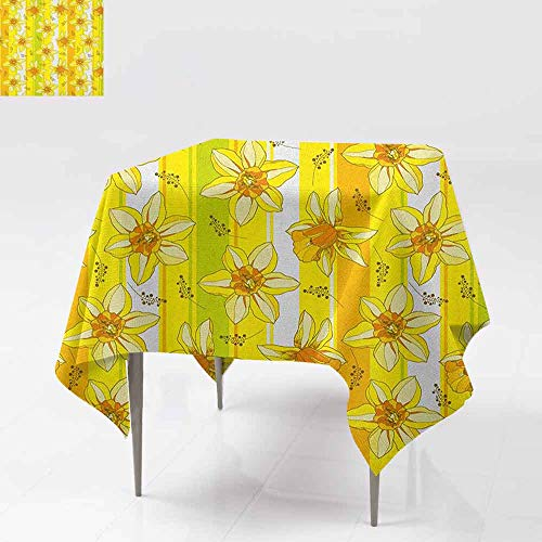 Jonquil Sheer - DUCKIL Restaurant Tablecloth Floral Spring Narcissus and Daffodil Jonquil Blooms Striped Backdrop Great for Buffet Table W60 xL60 Yellow Apple Green