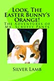 Look, The Easter Bunny's Orange: The Adventures of Mr. Scruffy Pants (Mr. Scruffy Pants and the Holidays) (Volume 2)