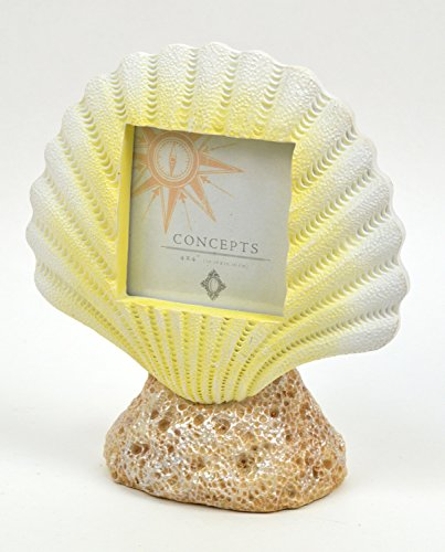 Concepts 4x4 Picture Frame Yellow Sea Shell On Rock Resin Photo Holder Nautical ()