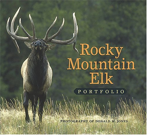 Rocky Mountain Elk Portfolio (Elk Portrait)