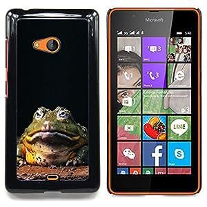 """Qstar Arte & diseño plástico duro Fundas Cover Cubre Hard Case Cover para Nokia Lumia 540 (Rana sapo grande divertido de Hypno"""")"""