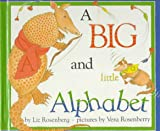 A Big and Little Alphabet, Liz Rosenberg and Vera Rosenberry, 0531330508